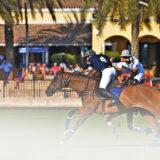 dubai equestrian club